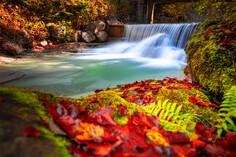 Herbstfarben © foto365.at